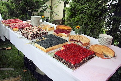 Stabler garden - home made cakes