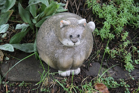 Cat sculpture in the Hefele garden