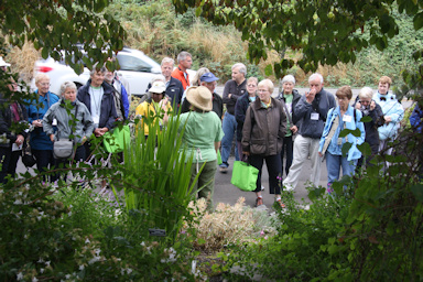 Tour of the Rogerson Clematis Collection at Luscher Farm©K.Woolfenden