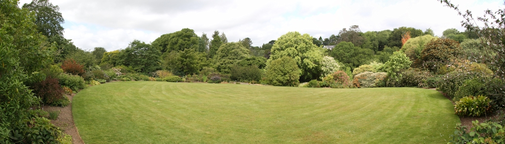 The lawn, looking in the other direction